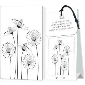 Blanco, bloemen