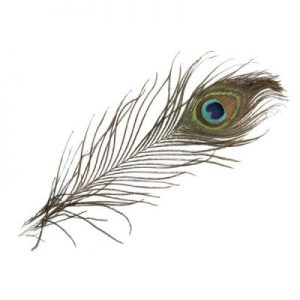 Pauwenveer 25 cm